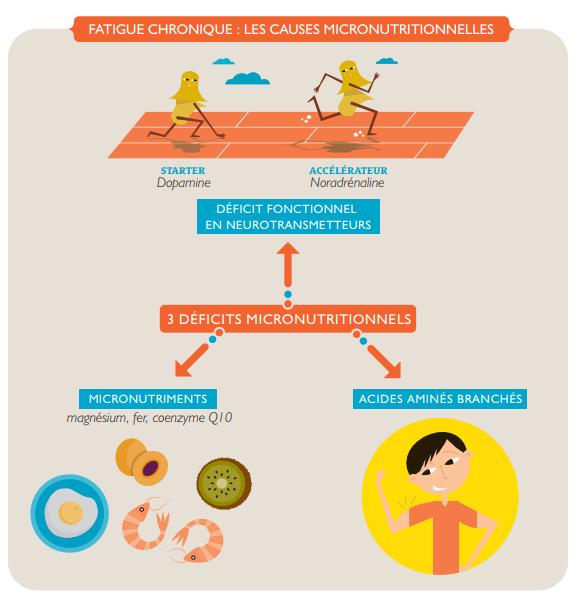 fatigue_micronutritionnell_schéma